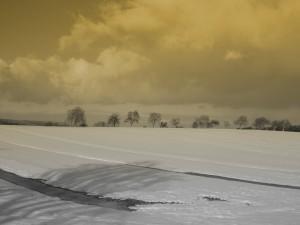 haegen-neige-Karim-TATAI-Strasbourg