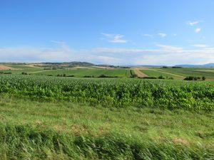 paysage du Kochesberg