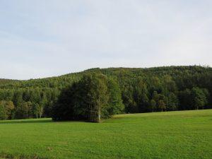 Col de Saales-Vosges-Karim-TATAI-Strasbourg