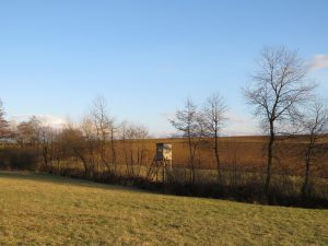 Cabane de chasse Karim TATAI Strasbourg