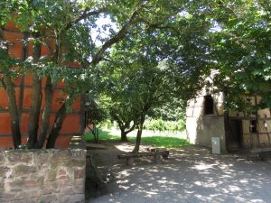 Cour ombragée Ecomusée d'Alsace karim-TATAI-Strasbourg