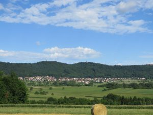Haegen-juillet-2017-Karim-TATAI-Strasbourg