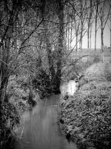 ruisseau-hochfelden-Karim-TATAI-Strasbourg