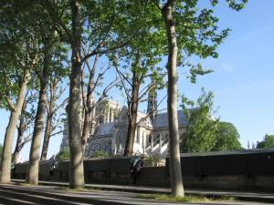 Notre Dame de Paris par la fenêtre de la voiture karim TATAI Strasbourg