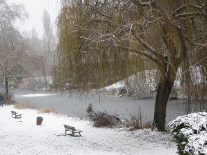 Parc de la citadelle Karim TATAI Strasbourg