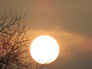 Soleil d'hiver Karim TATAI Strasbourg