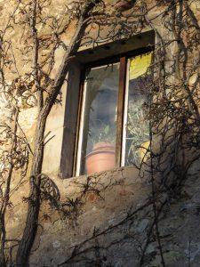 Soleil de fin d'après-midi sur une fenêtre Karim tATAI Strasbourg