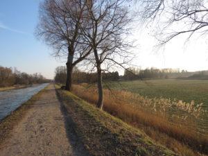 canal-soufflelweyersheim-2017-Karim-TATAI-Strasbourg